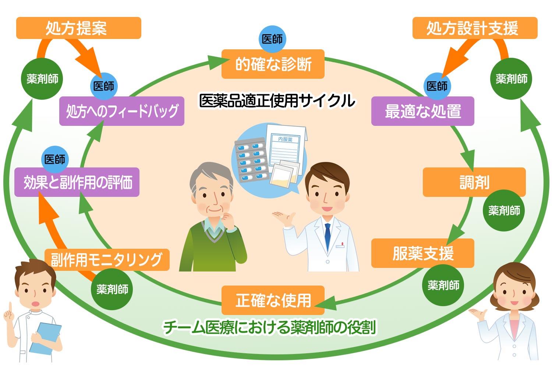 医薬品適正使用サイクル
